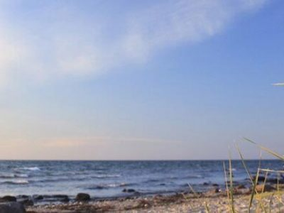 St. Peter-Ording – Blick über Dünengras, Strand und Meer